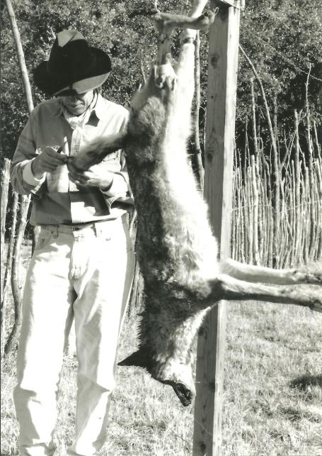 Joachim skinning coyote #1 001