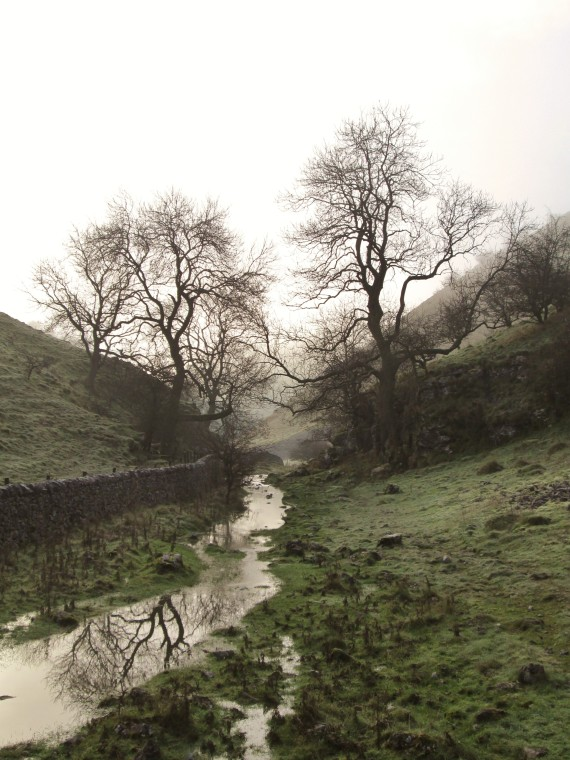 Walker's Peak District creek with trees
