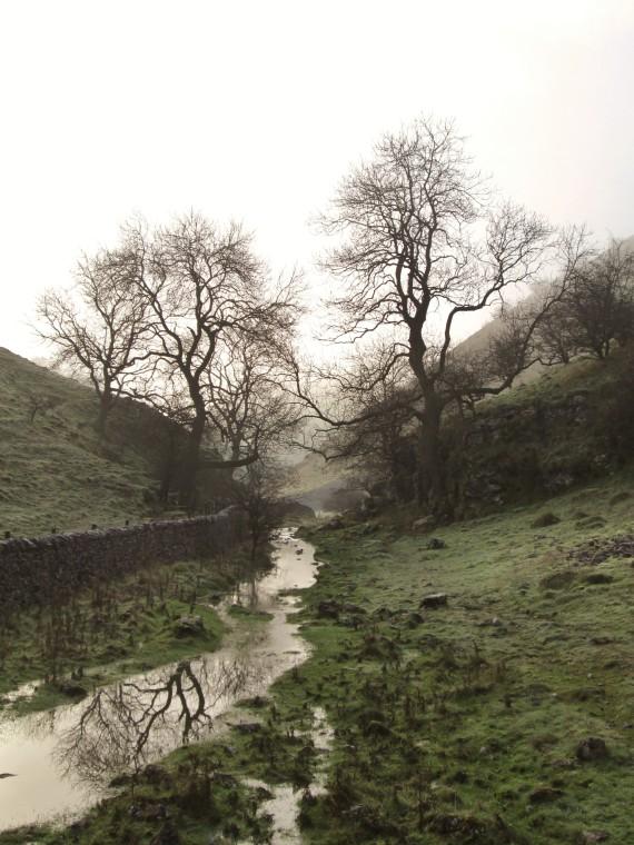 Walker's Peak District creek with trees