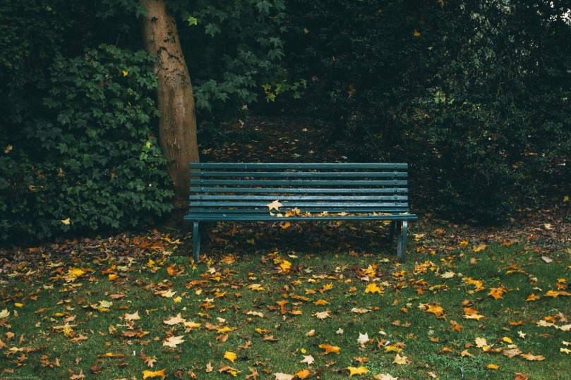 Green park bench, Free-photos from Pixabay